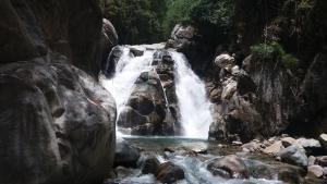 Talamanca Reserve, Отели  Rivas - big - 88