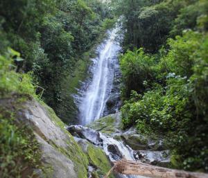 Talamanca Reserve, Отели  Rivas - big - 96