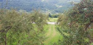 Visitorska dolina, Dovolenkové domy  Plav - big - 6