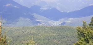Visitorska dolina, Dovolenkové domy  Plav - big - 13