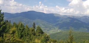 Visitorska dolina, Dovolenkové domy  Plav - big - 14