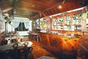Bela Vista Parque Hotel, Отели  Caxias do Sul - big - 23