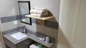 Deluxe Inn - Sarasota, Мотели  Сарасота - big - 9