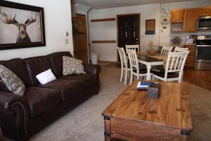 Buffalo Village 406CC, Prázdninové domy  Silverthorne - big - 19