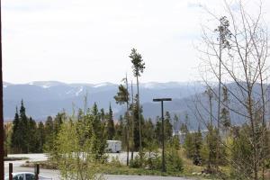 Timber Ridge 308, Case vacanze  Silverthorne - big - 16