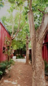 Villa Kaya, Отели  Уагадугу - big - 10