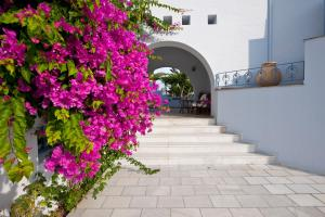 Ammos Naxos Exclusive Apartments & Studios, Апарт-отели  Наксос - big - 83