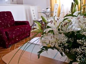 Apartments Bianca, Апартаменты  Херцег-Нови - big - 4