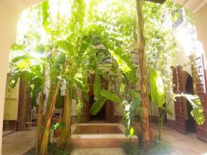 Dar El Calame, Riady  Marakéš - big - 54