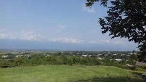 Nino's Wine Farm, Atskuri, Kakheti, Georgia - Zemo Khodasheni