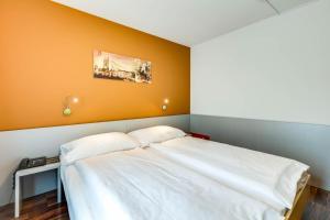 Alexander Guesthouse, Penziony  Curych - big - 40