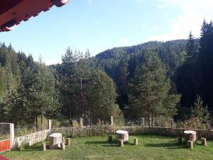 Villa Chaushevi, Villas  Pletena - big - 14