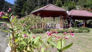 Villa Chaushevi, Villas  Pletena - big - 10