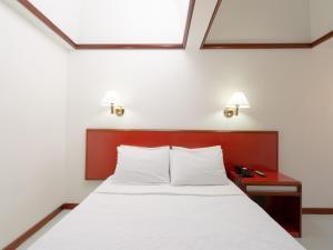 Hotel Nobilis, Szállodák  São Paulo - big - 38