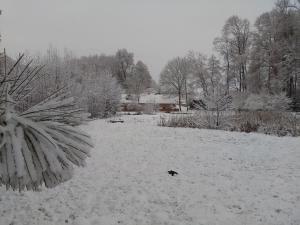 Rybvelvet, Prázdninové domy  Skořenice - big - 9