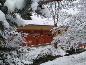 Rybvelvet, Prázdninové domy  Skořenice - big - 83