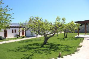 Masseria Valente, Farmházak  Ostuni - big - 43