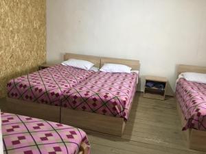 Tishe, Hostels  Omalo - big - 17