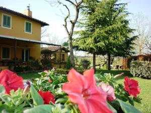 Casale Ginette, Country houses  Incisa in Valdarno - big - 34