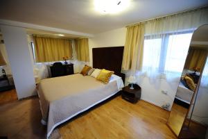 Hotel Royal Craiova, Hotely  Craiova - big - 87