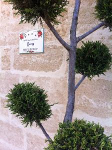 Masseria Ruri Pulcra, Hotel  Patù - big - 88