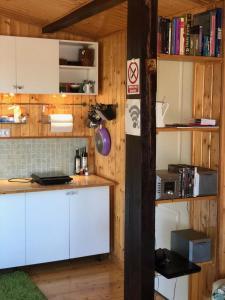 La Garaje, Apartmány  Ciolpani - big - 4