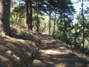 Quinta das Aveleiras, Farmy  Torre de Moncorvo - big - 73