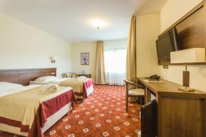 Dziki Potok Konferencje Grill & Prestige SPA, Hotely  Karpacz - big - 4