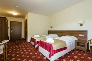 Dziki Potok Konferencje Grill & Prestige SPA, Hotely  Karpacz - big - 15