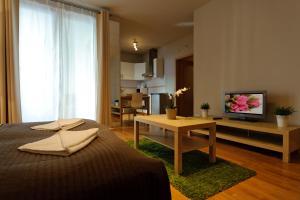 Central Passage Budapest Apartments, Appartamenti  Budapest - big - 28