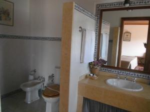 Casa De Canilhas, Guest houses  Mesão Frio - big - 3