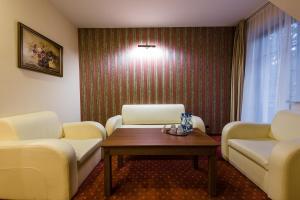 Dziki Potok Konferencje Grill & Prestige SPA, Hotely  Karpacz - big - 18