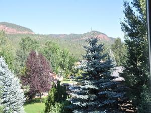 Dalton Ranch - 73 Red Cliff Road, Case vacanze  Durango - big - 12