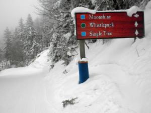 Whistlepunk #12, Holiday homes  Valley Head - big - 7
