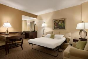 Embassy Suites Orlando Lake Buena Vista South, Hotels  Kissimmee - big - 2