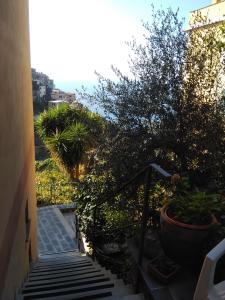 Sole Terra Mare, Penziony  Corniglia - big - 28