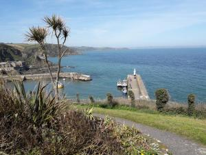 Wild Air Guest House, Bed & Breakfast  Mevagissey - big - 4