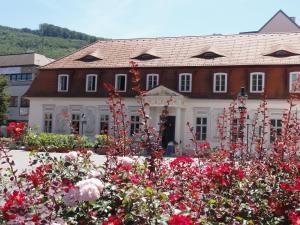 Haus Feuchtl, Affittacamere  Purkersdorf - big - 35