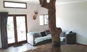 Blyde River Cabin Guesthouse, Penziony  Hoedspruit - big - 13