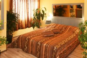 Hotel Color, Hotely  Varna - big - 81