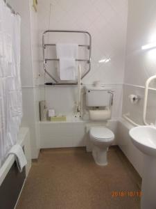 Standard Accessible Single Room