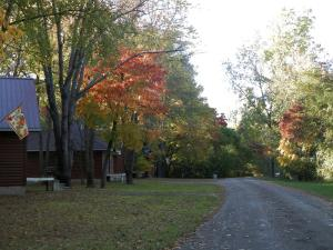 Serenity Springs - Michigan Ci..
