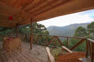 Gorilla Closeup Lodge, Chaty v prírode  Kisoro - big - 56