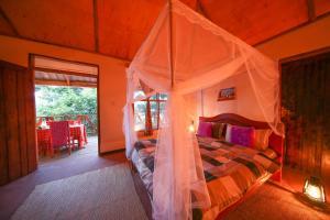 Gorilla Closeup Lodge, Chaty v prírode  Kisoro - big - 31