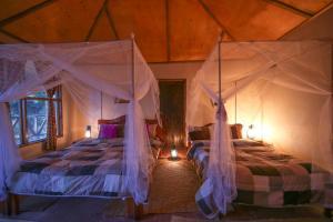 Gorilla Closeup Lodge, Chaty v prírode  Kisoro - big - 28