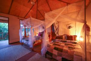 Gorilla Closeup Lodge, Chaty v prírode  Kisoro - big - 27