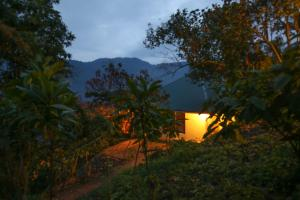 Gorilla Closeup Lodge, Chaty v prírode  Kisoro - big - 26