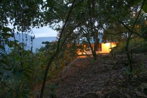 Gorilla Closeup Lodge, Chaty v prírode  Kisoro - big - 25