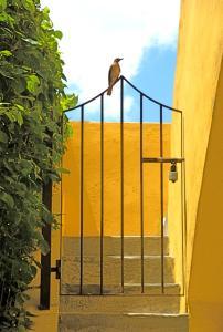 Hacienda Misné, Hotely  Mérida - big - 25