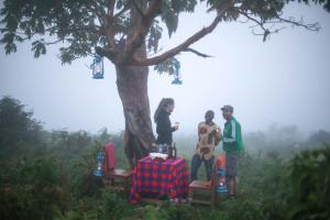 Gorilla Closeup Lodge, Chaty v prírode  Kisoro - big - 33
